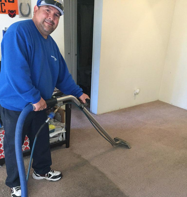 Carpet Cleaning Amp Upholstery Cleaning South East County